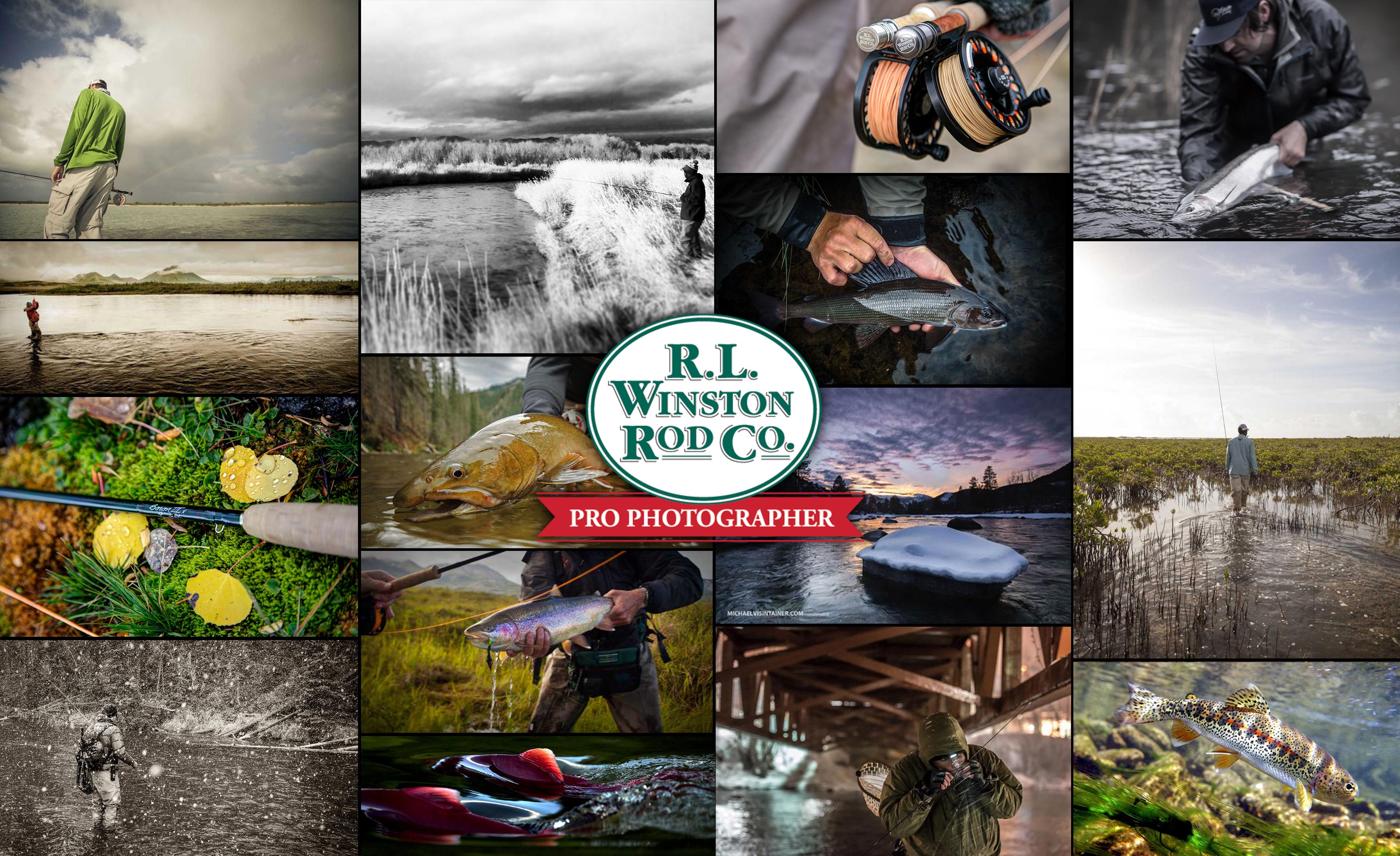 website collage photo