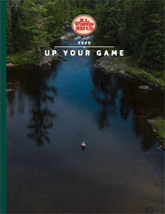 Download the 2019 Winston Catalog PDF