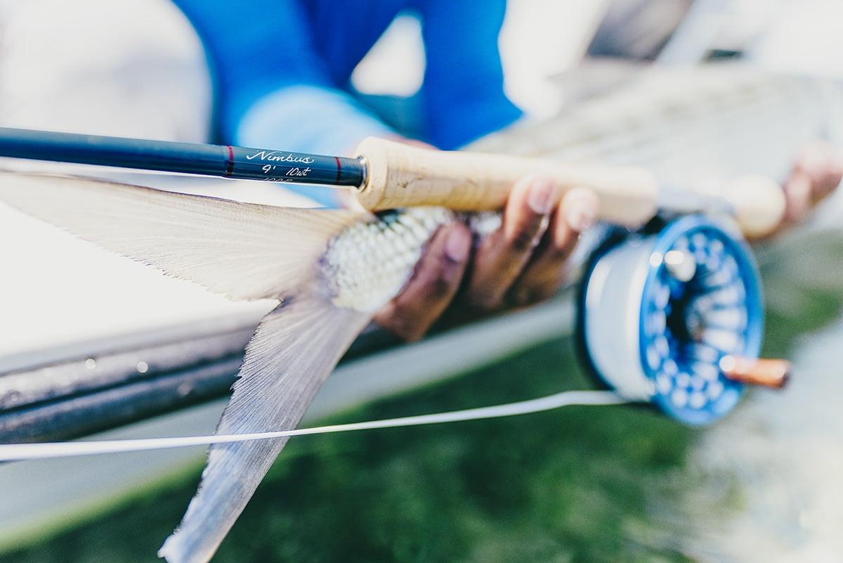 The New Nimbus Fly Rod